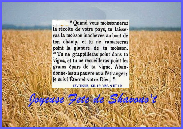 Shavouot018.jpg