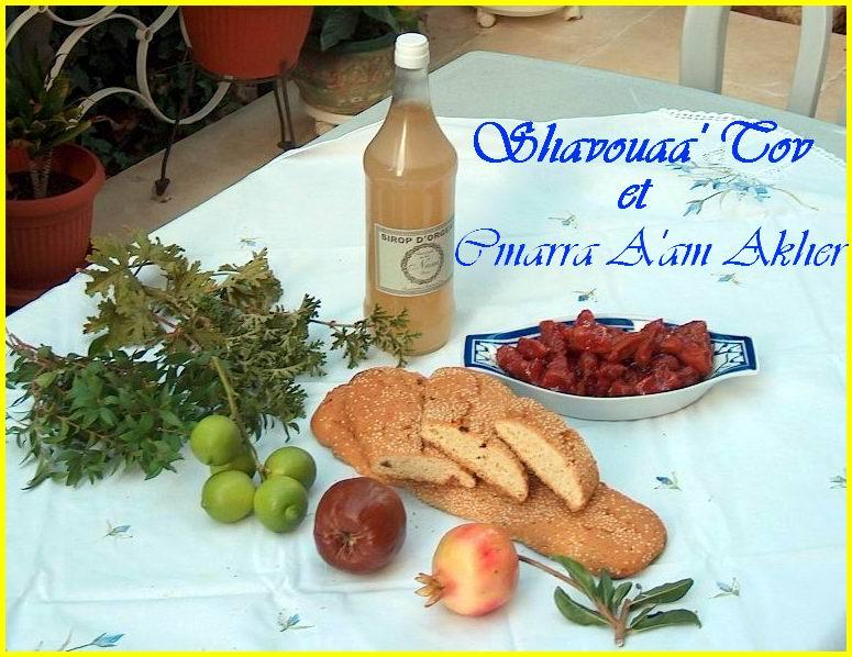 ShavTov220907.jpg